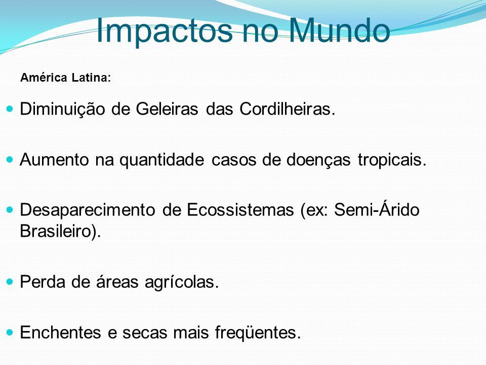 Diminuição de Geleiras das Cordilheiras. Aumento na quantidade casos de doenças tropicais. Desaparecimento de Ecossistemas (ex: Semi-Árido Brasileiro)