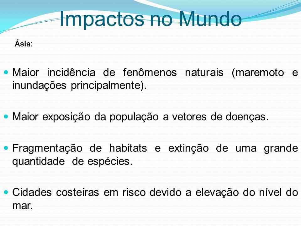 Maior incidência de fenômenos naturais (maremoto e inundações principalmente). Maior exposição da população a vetores de doenças. Fragmentação de habi