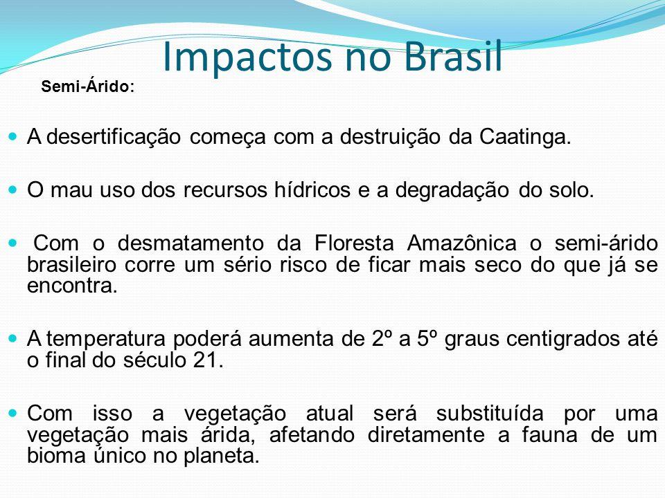 Impactos no Brasil A desertificação começa com a destruição da Caatinga. O mau uso dos recursos hídricos e a degradação do solo. Com o desmatamento da