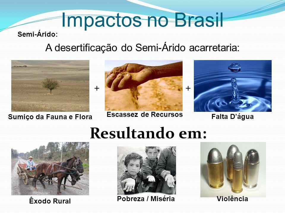 Impactos no Brasil A desertificação do Semi-Árido acarretaria: Semi-Árido: ++ Resultando em: Sumiço da Fauna e Flora Escassez de Recursos Êxodo Rural Pobreza / MisériaViolência Falta D'água