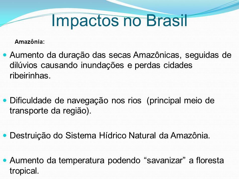 Aumento da duração das secas Amazônicas, seguidas de dilúvios causando inundações e perdas cidades ribeirinhas. Dificuldade de navegação nos rios (pri