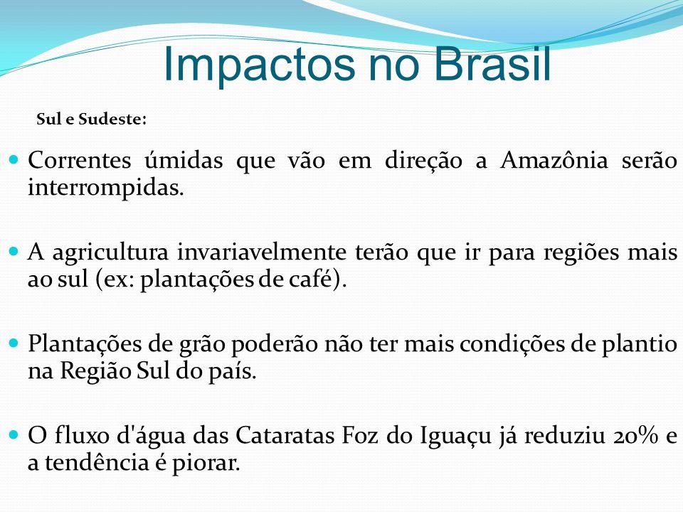 Correntes úmidas que vão em direção a Amazônia serão interrompidas. A agricultura invariavelmente terão que ir para regiões mais ao sul (ex: plantaçõe