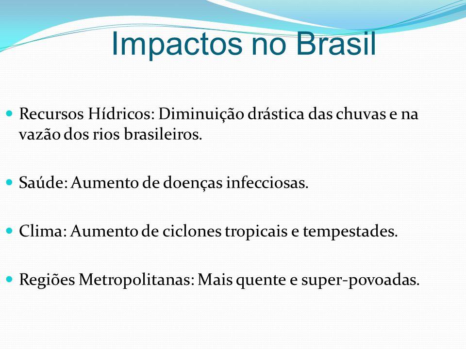 Recursos Hídricos: Diminuição drástica das chuvas e na vazão dos rios brasileiros. Saúde: Aumento de doenças infecciosas. Clima: Aumento de ciclones t