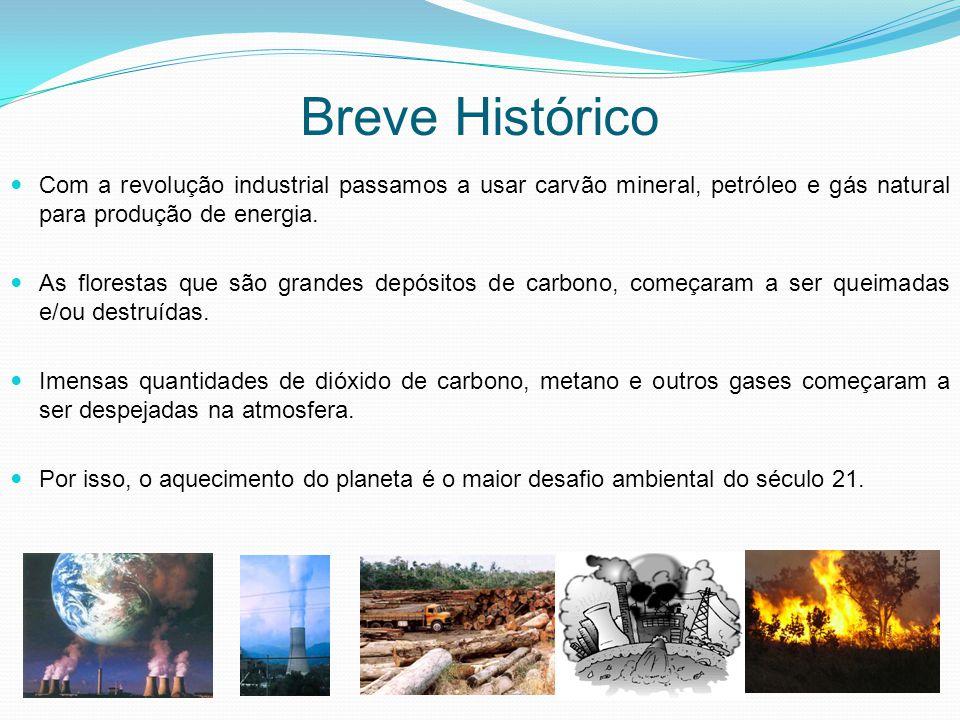 Breve Histórico Com a revolução industrial passamos a usar carvão mineral, petróleo e gás natural para produção de energia. As florestas que são grand