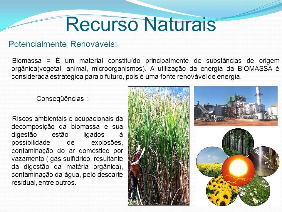 Recurso Naturais Potencialmente Renováveis: Biomassa = É um material constituído principalmente de substâncias de origem orgânica(vegetal, animal, mic