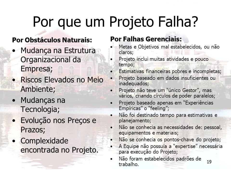 19 Por que um Projeto Falha? Por Obstáculos Naturais: Mudança na Estrutura Organizacional da Empresa; Riscos Elevados no Meio Ambiente; Mudanças na Te
