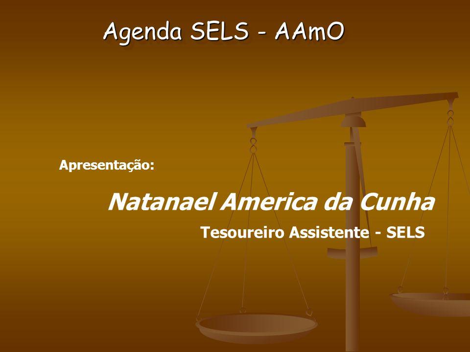 Apresentação: Natanael America da Cunha Tesoureiro Assistente - SELS Agenda SELS - AAmO