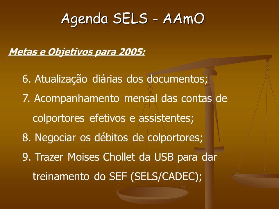 Agenda SELS - AAmO Metas e Objetivos para 2005: 6.