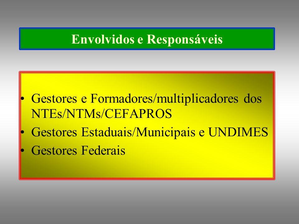 Envolvidos e Responsáveis Gestores e Formadores/multiplicadores dos NTEs/NTMs/CEFAPROS Gestores Estaduais/Municipais e UNDIMES Gestores Federais