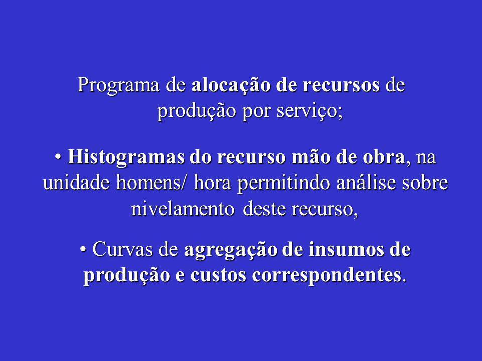 Programa de alocação de recursos de produção por serviço; Curvas de agregação de insumos de produção e custos correspondentes.