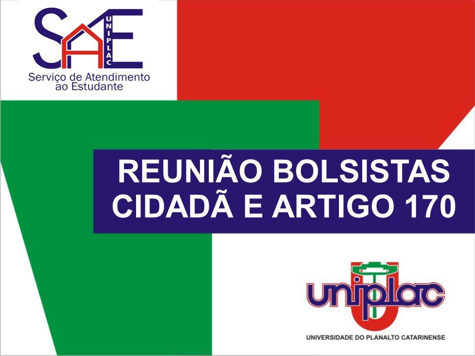 REUNIÃO BOLSISTAS CIDADÃ E ARTIGO 170