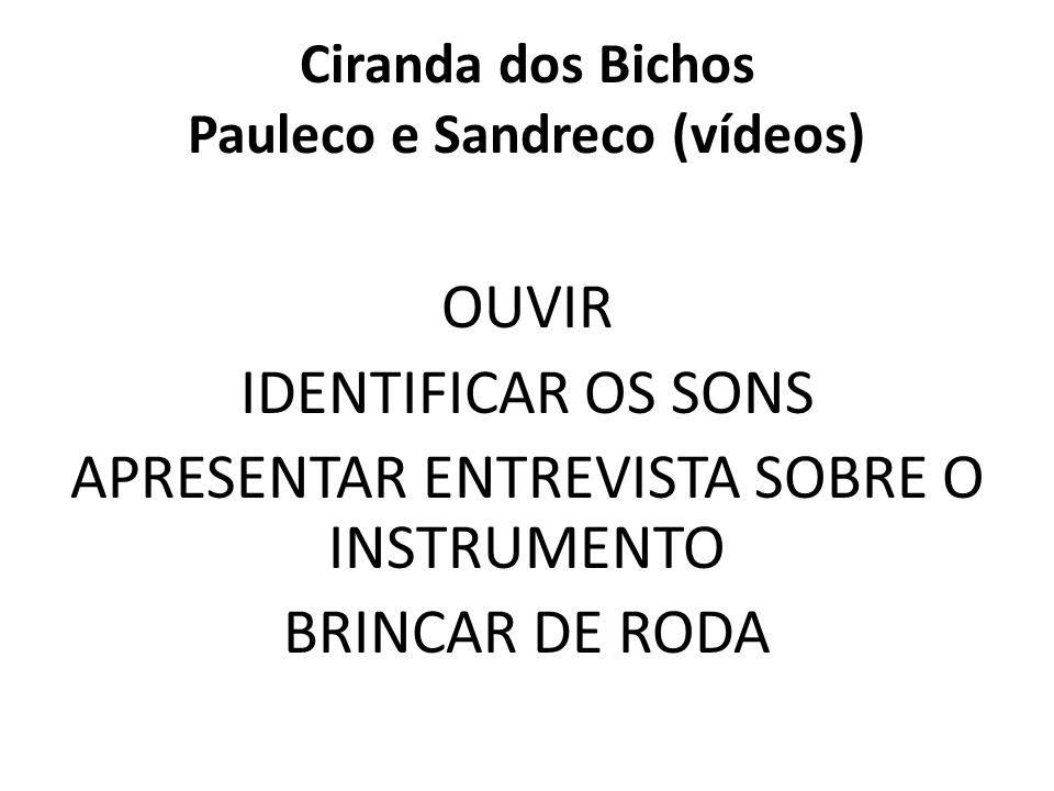 Ciranda dos Bichos Pauleco e Sandreco (vídeos) OUVIR IDENTIFICAR OS SONS APRESENTAR ENTREVISTA SOBRE O INSTRUMENTO BRINCAR DE RODA