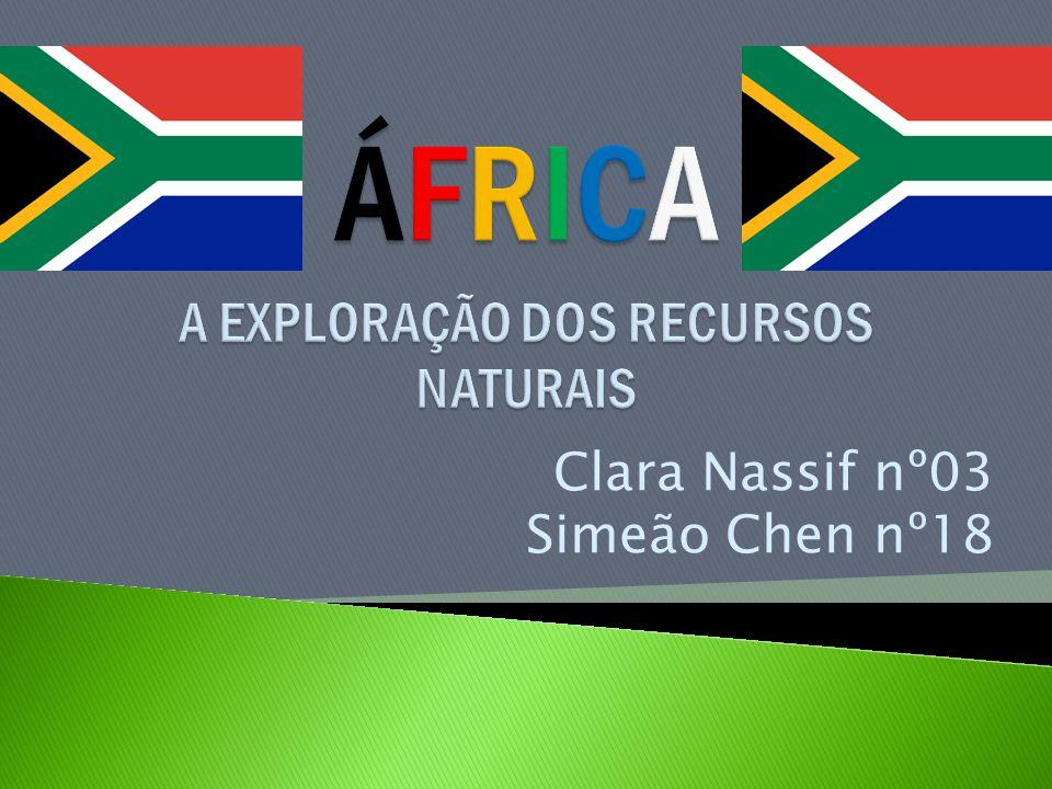 Clara Nassif nº03 Simeão Chen nº18