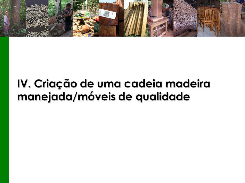 IV. Criação de uma cadeia madeira manejada/móveis de qualidade