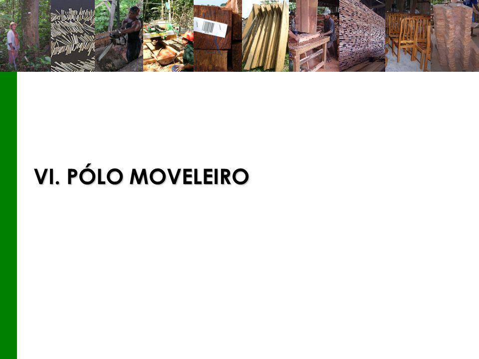 VI. PÓLO MOVELEIRO