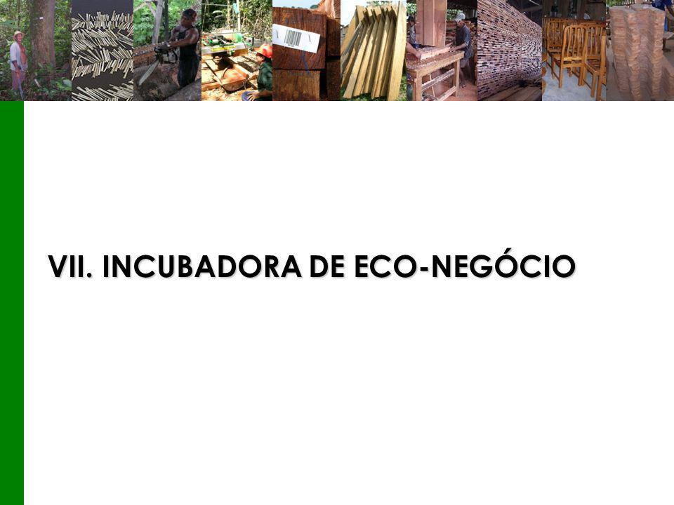 VII. INCUBADORA DE ECO-NEGÓCIO