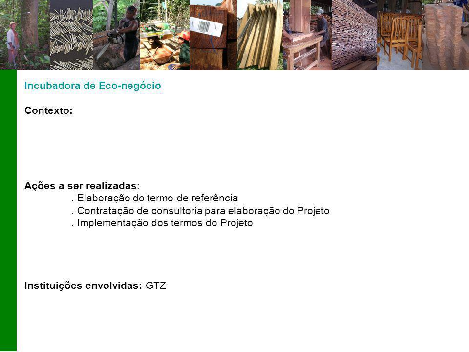Incubadora de Eco-negócio Contexto: Ações a ser realizadas:.