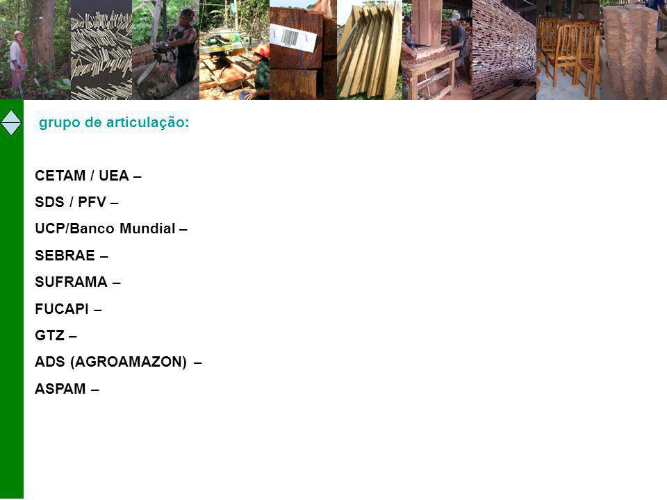 grupo de articulação: CETAM / UEA – SDS / PFV – UCP/Banco Mundial – SEBRAE – SUFRAMA – FUCAPI – GTZ – ADS (AGROAMAZON) – ASPAM –