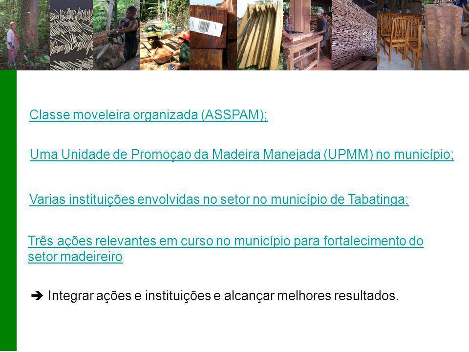 Classe moveleira organizada (ASSPAM); Três ações relevantes em curso no município para fortalecimento do setor madeireiro Varias instituições envolvidas no setor no município de Tabatinga;  Integrar ações e instituições e alcançar melhores resultados.