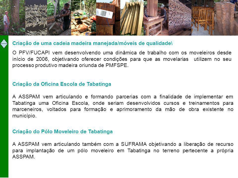 Criação de uma cadeia madeira manejada/móveis de qualidade\ O PFV/FUCAPI vem desenvolvendo uma dinâmica de trabalho com os moveleiros desde início de 2006, objetivando oferecer condições para que as movelarias utilizem no seu processo produtivo madeira oriunda de PMFSPE.
