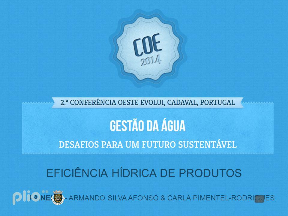 PAINEL II - ARMANDO SILVA AFONSO & CARLA PIMENTEL-RODRIGUES EFICIÊNCIA HÍDRICA DE PRODUTOS