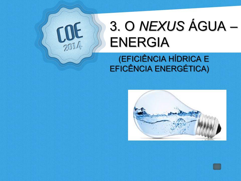 3. O NEXUS ÁGUA – ENERGIA (EFICIÊNCIA HÍDRICA E EFICÊNCIA ENERGÉTICA) (EFICIÊNCIA HÍDRICA E EFICÊNCIA ENERGÉTICA)