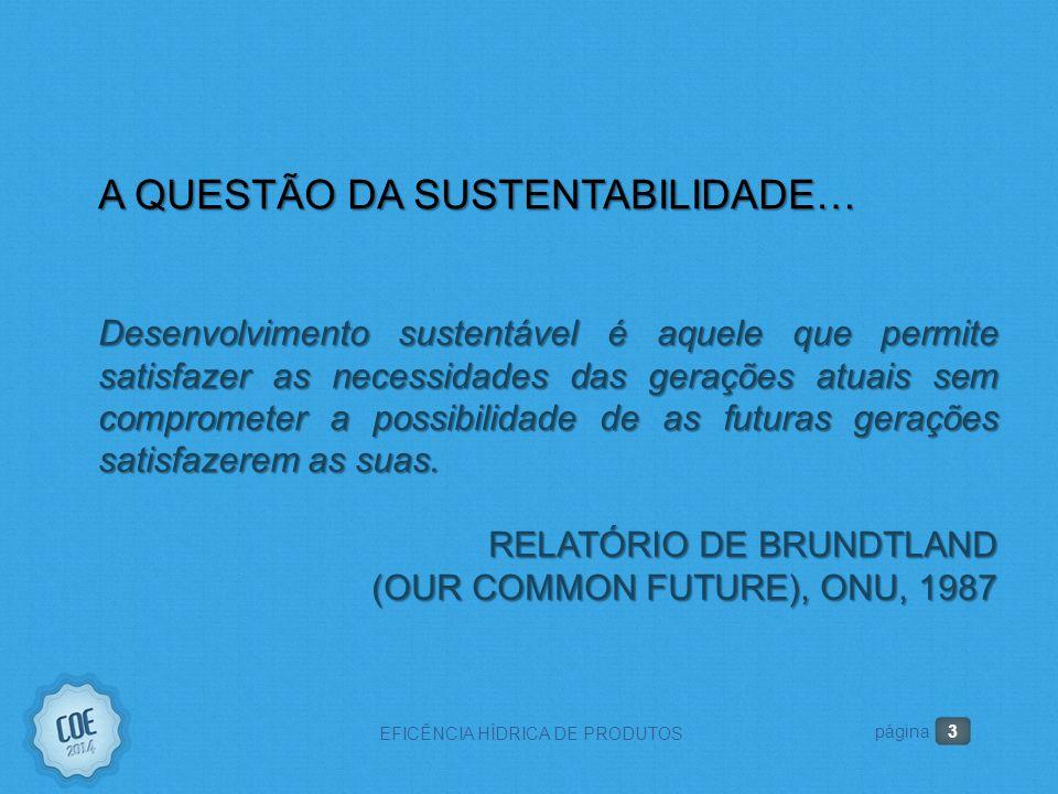 3 EFICÊNCIA HÍDRICA DE PRODUTOS A QUESTÃO DA SUSTENTABILIDADE… Desenvolvimento sustentável é aquele que permite satisfazer as necessidades das gerações atuais sem comprometer a possibilidade de as futuras gerações satisfazerem as suas.