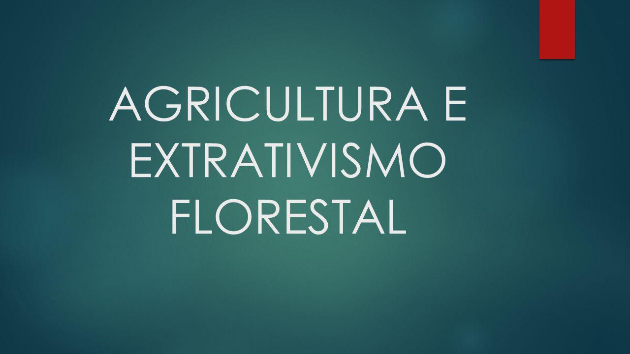 AGRICULTURA E EXTRATIVISMO FLORESTAL