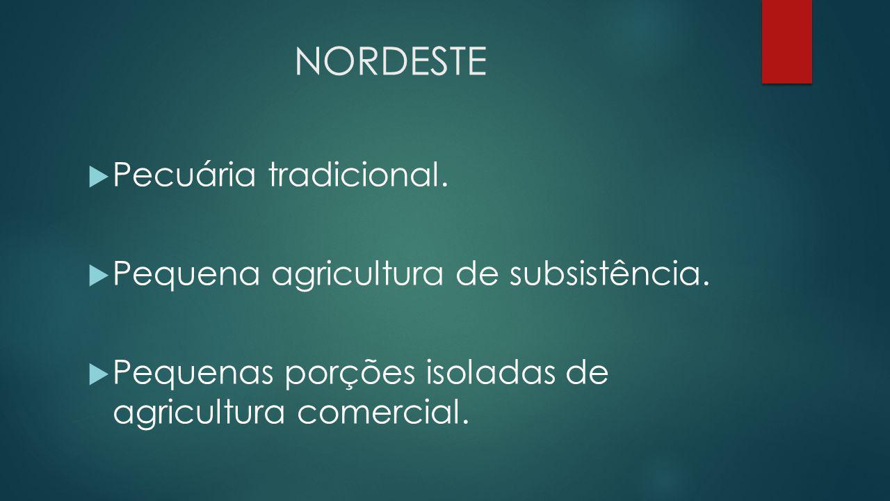 NORDESTE  Pecuária tradicional.  Pequena agricultura de subsistência.  Pequenas porções isoladas de agricultura comercial.