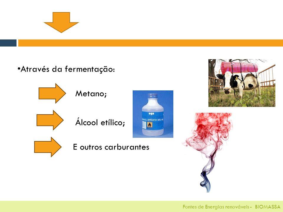 Fontes de Energias renováveis - BIOMASSA Através da fermentação: Metano; Álcool etílico; E outros carburantes