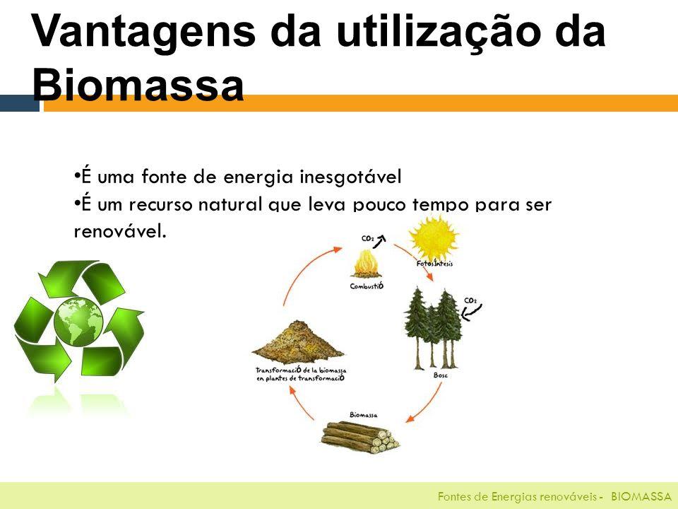 Fontes de Energias renováveis - BIOMASSA Vantagens da utilização da Biomassa É uma fonte de energia inesgotável É um recurso natural que leva pouco tempo para ser renovável.