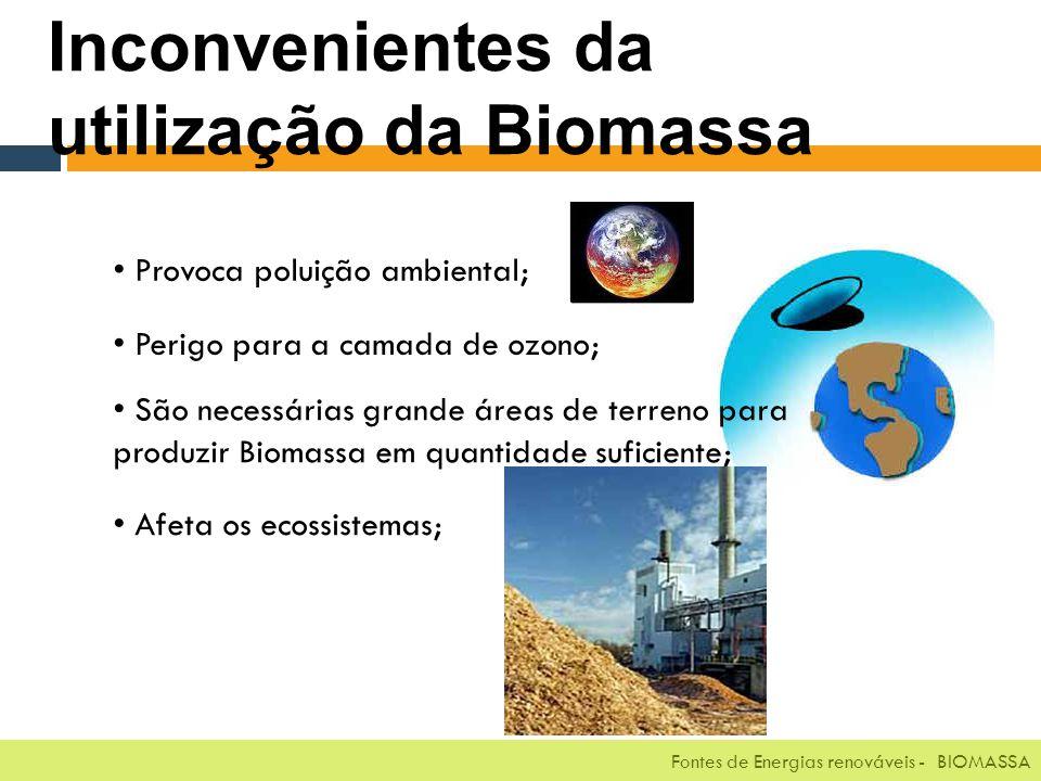 Fontes de Energias renováveis - BIOMASSA Inconvenientes da utilização da Biomassa Provoca poluição ambiental; Perigo para a camada de ozono; São necessárias grande áreas de terreno para produzir Biomassa em quantidade suficiente; Afeta os ecossistemas;