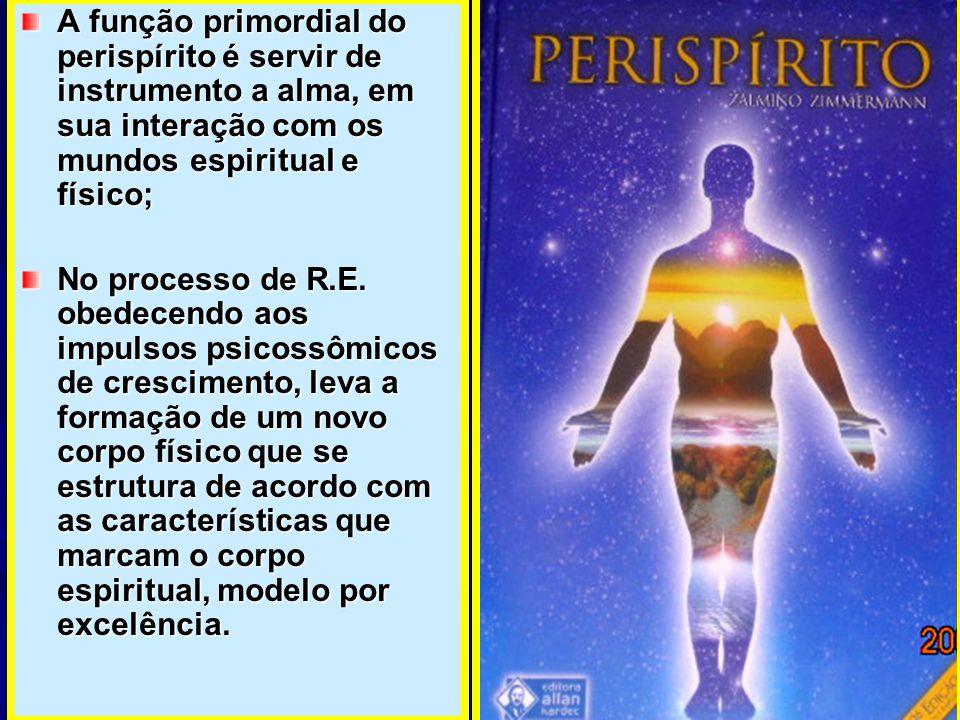 A função primordial do perispírito é servir de instrumento a alma, em sua interação com os mundos espiritual e físico; No processo de R.E. obedecendo