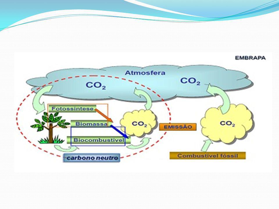 Derivados Bio-óleo: líquido negro cujas destinações principais são aquecimento e geração de energia elétrica.