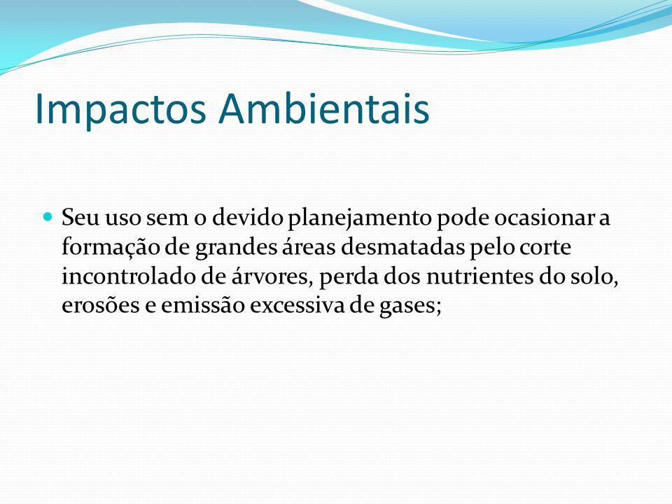 Biomassa no Brasil No Brasil, como no resto do mundo, o uso da biomassa como fonte renovável de energia, vem através do uso de restos de madeira, bagaço de cana, lenha, carvão vegetal, dejetos de animais, álcool e outras fontes primárias de energia.