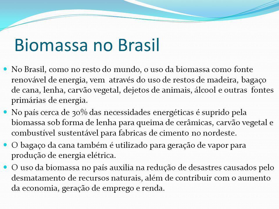 Biomassa no Brasil No Brasil, como no resto do mundo, o uso da biomassa como fonte renovável de energia, vem através do uso de restos de madeira, baga