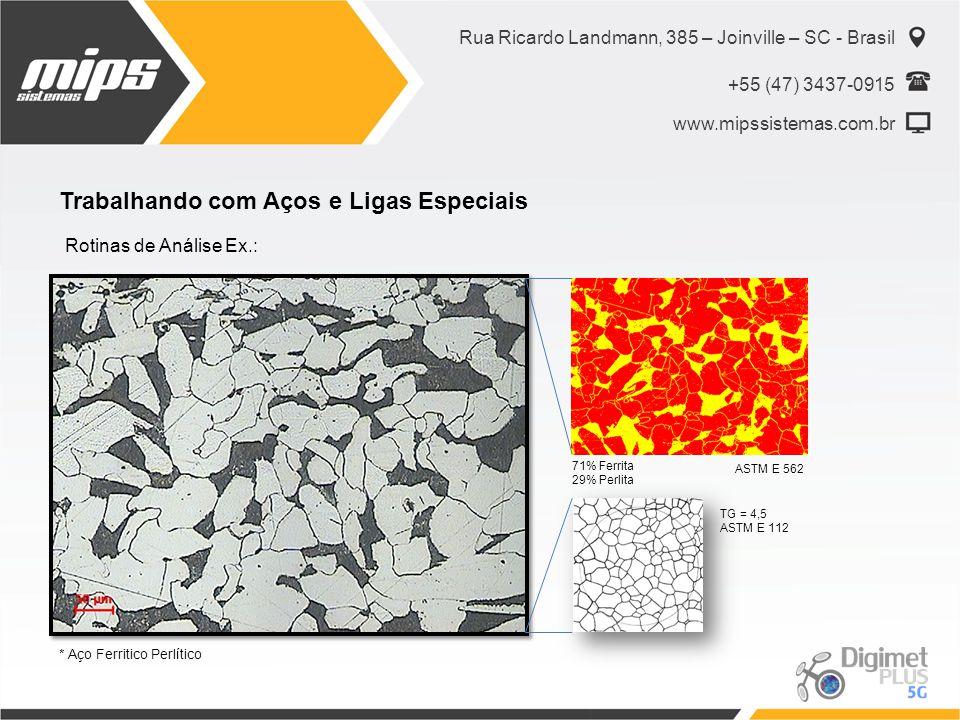 Rua Ricardo Landmann, 385 – Joinville – SC - Brasil +55 (47) 3437-0915 www.mipssistemas.com.br Trabalhando com Aços e Ligas Especiais Rotinas de Análi