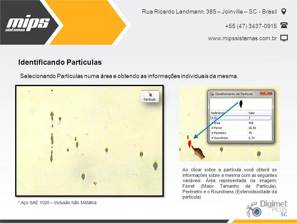 Rua Ricardo Landmann, 385 – Joinville – SC - Brasil +55 (47) 3437-0915 www.mipssistemas.com.br Identificando Partículas Selecionando Partículas numa á