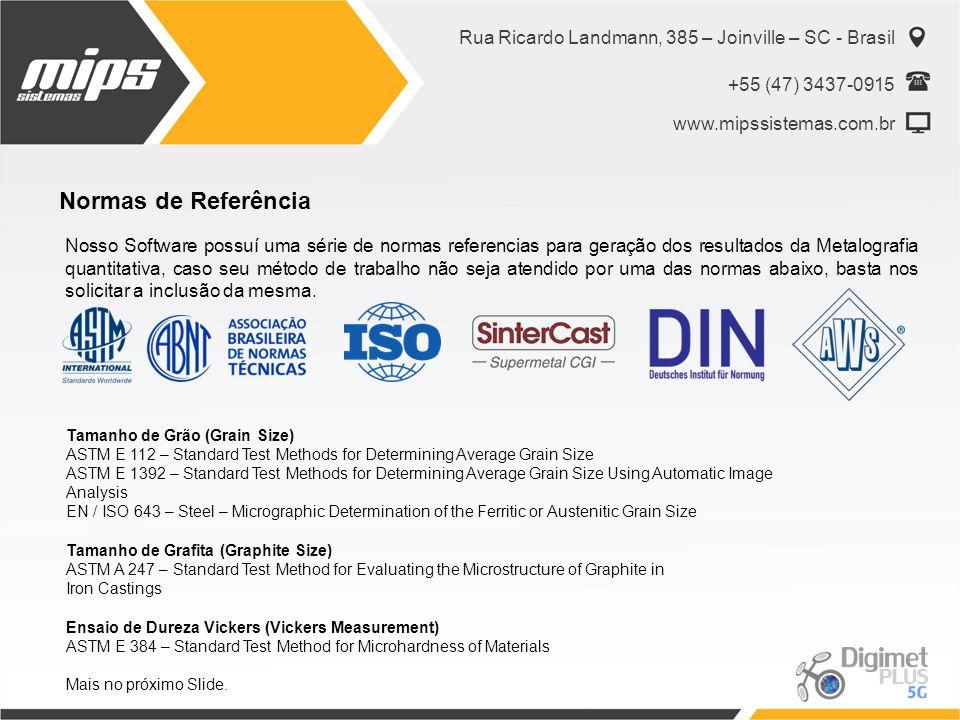 Rua Ricardo Landmann, 385 – Joinville – SC - Brasil +55 (47) 3437-0915 www.mipssistemas.com.br Normas de Referência Nosso Software possuí uma série de
