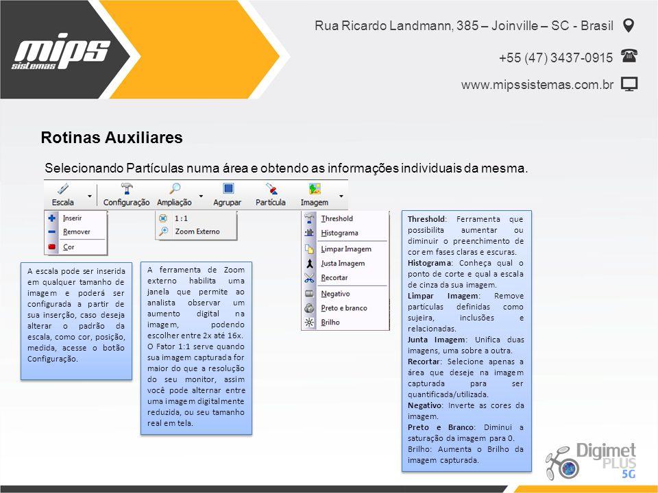 Rua Ricardo Landmann, 385 – Joinville – SC - Brasil +55 (47) 3437-0915 www.mipssistemas.com.br Rotinas Auxiliares Selecionando Partículas numa área e obtendo as informações individuais da mesma.