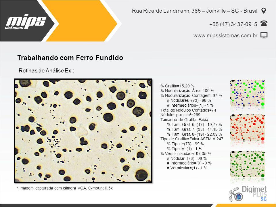 Rua Ricardo Landmann, 385 – Joinville – SC - Brasil +55 (47) 3437-0915 www.mipssistemas.com.br Trabalhando com Ferro Fundido Rotinas de Análise Ex.: %