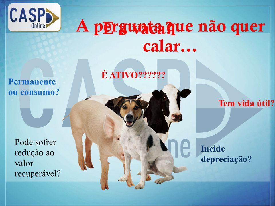 www.casponline.com.br E a vaca. Tem vida útil. Pode sofrer redução ao valor recuperável.
