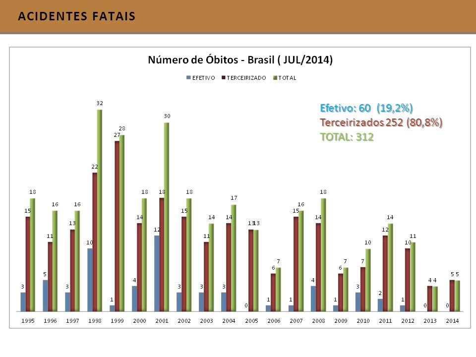 ACIDENTES FATAIS Efetivo: 60 (19,2%) Terceirizados 252 (80,8%) TOTAL: 312