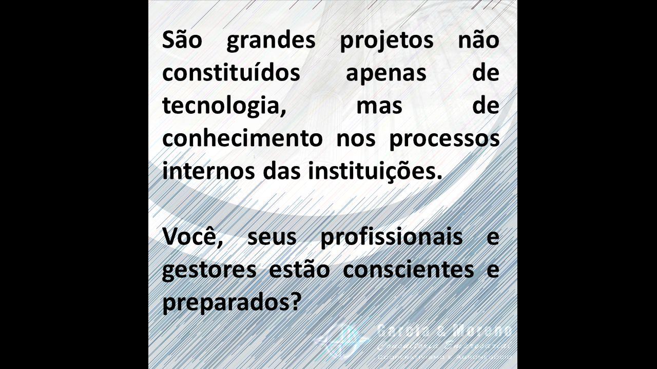 São grandes projetos não constituídos apenas de tecnologia, mas de conhecimento nos processos internos das instituições.
