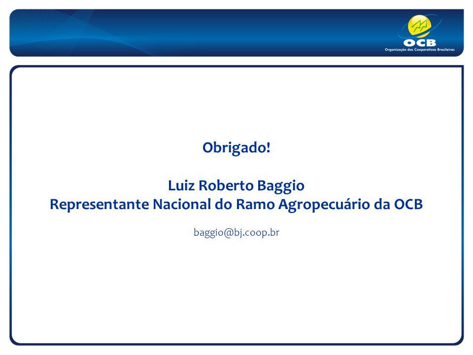 Obrigado! Luiz Roberto Baggio Representante Nacional do Ramo Agropecuário da OCB baggio@bj.coop.br