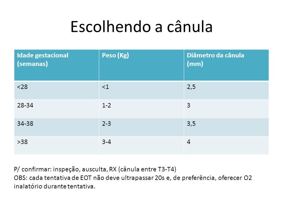 Escolhendo a cânula Idade gestacional (semanas) Peso (Kg)Diâmetro da cânula (mm) <28<12,5 28-341-23 34-382-33,5 >383-44 P/ confirmar: inspeção, auscul
