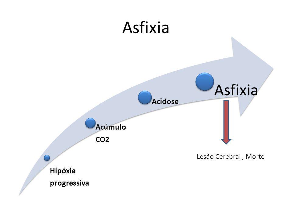 Asfixia Hipóxia progressiva Acúmulo CO2 Acidose Asfixia Lesão Cerebral, Morte