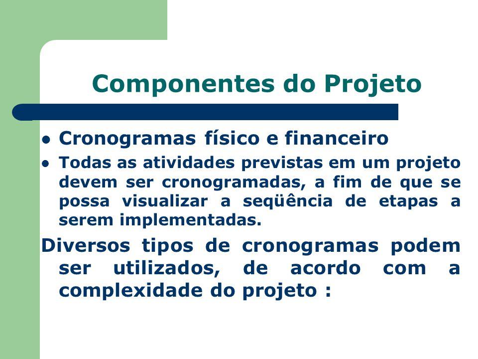 Componentes do Projeto Cronogramas físico e financeiro Todas as atividades previstas em um projeto devem ser cronogramadas, a fim de que se possa visu