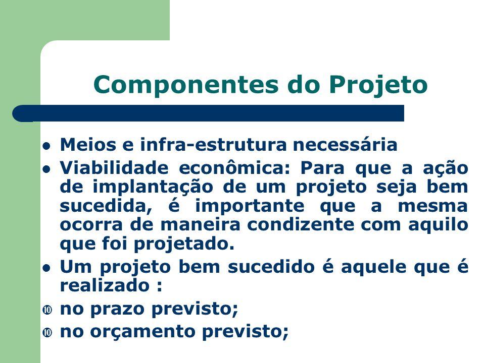 Componentes do Projeto Meios e infra-estrutura necessária Viabilidade econômica: Para que a ação de implantação de um projeto seja bem sucedida, é imp
