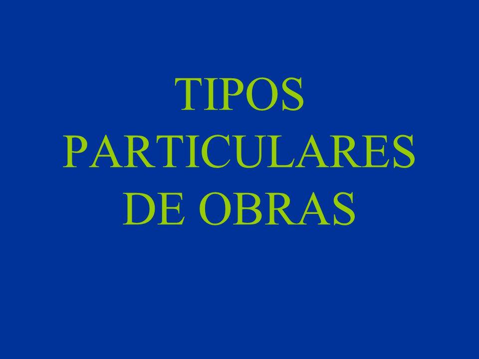 TIPOS PARTICULARES DE OBRAS
